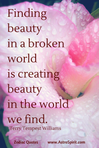 Terry Tempest Williams quote rose beauty broken world Taurus AstroSpirit