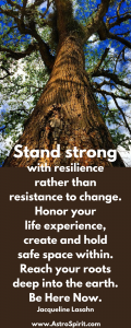 Stand strong, with resilience rather than resistance to change. Reach your roots deep into the earth. Jacqueline Lasahn