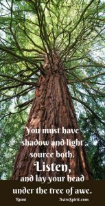 You must have shadow and light source both. Listen, and lay your head under the tree of awe. Rumi.  Jacqueline Lasahn, Intuitive Astrologer