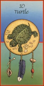 Medicine Card Turtle  155x300 - A Traveling Turtle Story