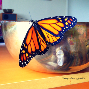 Monarch butterfly on my Tibetan Bowl
