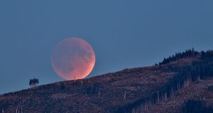 Lunar Eclipse Rising Blood Moon by liquidcrash is licensed under CC BY SA 2.0 300x160 - Lunar Eclipse Leo: Ignite your Path
