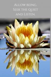 Allow being. Seek the quiet and Listen. 1 200x300 - Pisces New Moon: Dreamweaver